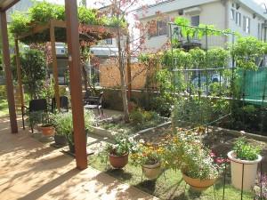 garden①